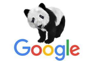 עדכון אלגוריתם של גוגל 2013