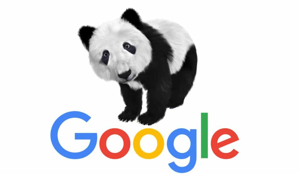 עדכון אלגוריתם של גוגל
