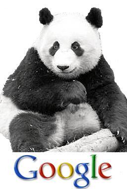 עדכון פנדה של גוגל
